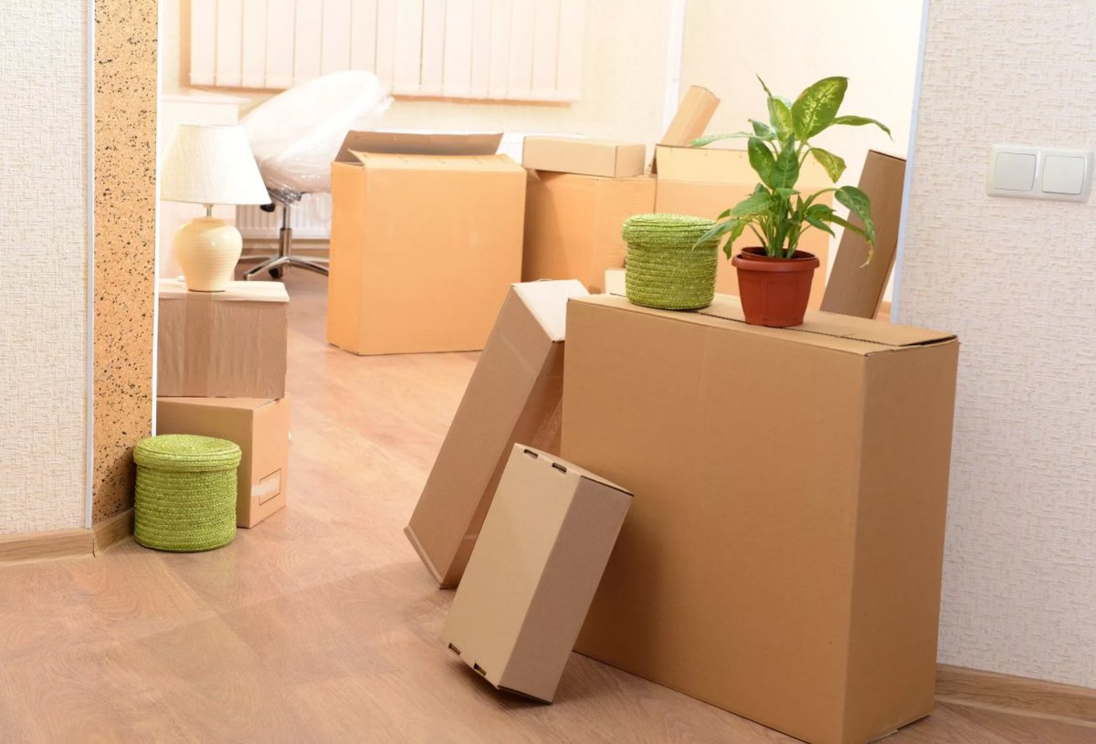 Moving and Storage Options