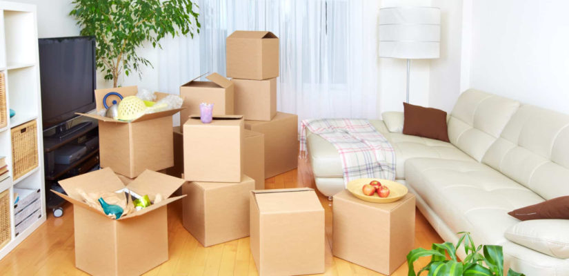 Things to Consider When Choosing a Mover