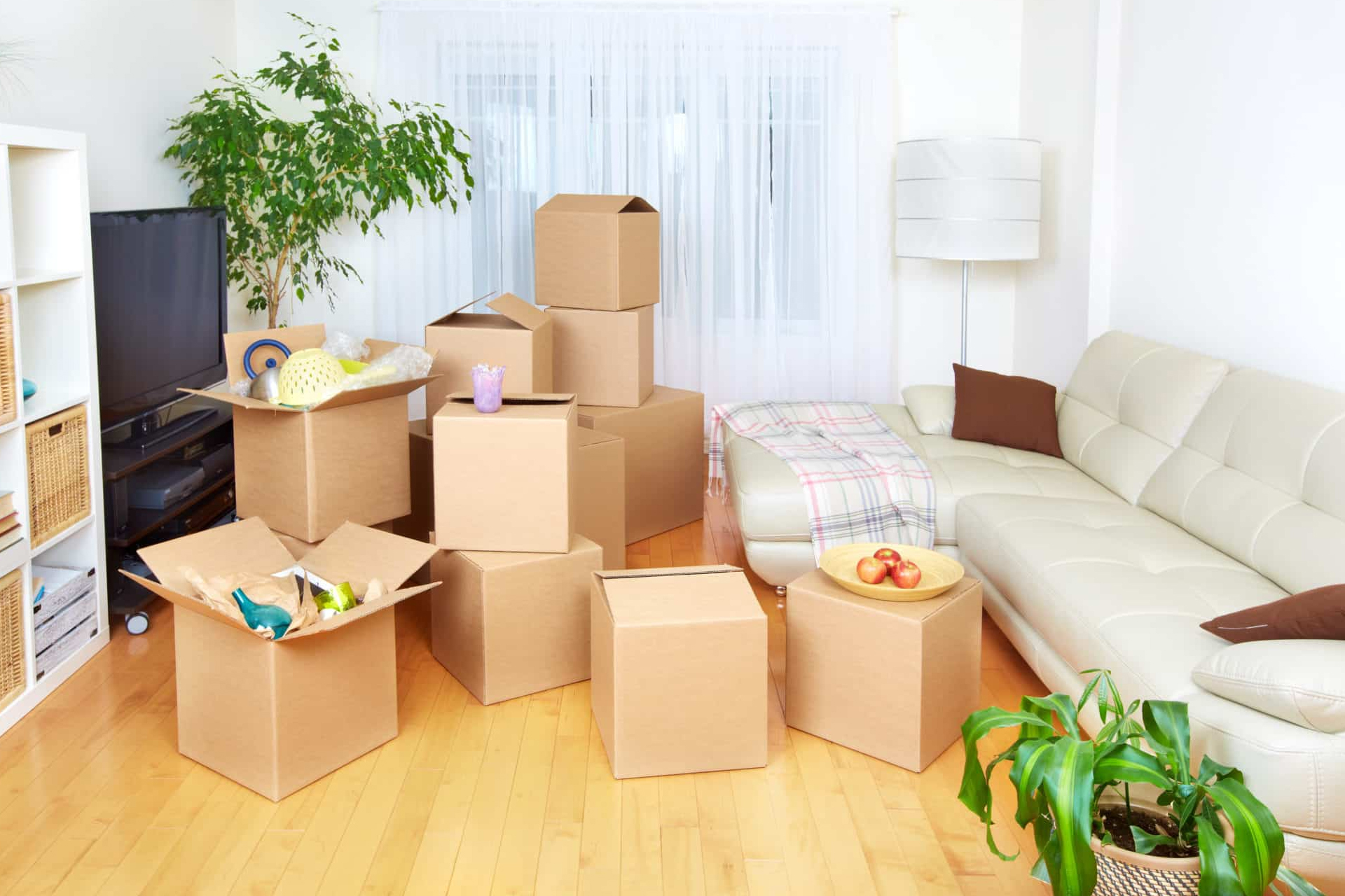 Issues to Think about When Selecting a Mover