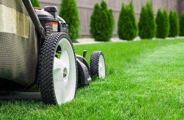 All you need to know about starting a new lawn mowing business